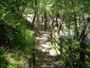 遊歩道の風景|大滝河川遊歩道