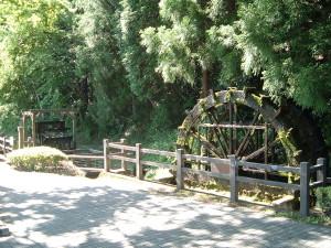 日光杉並木街道 杉並木公園 水車