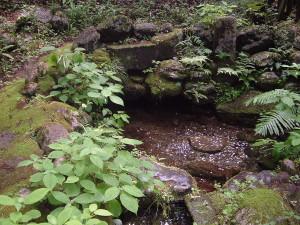 滝尾古道|酒の泉