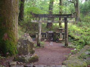 滝尾古道|子種石