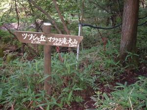 霧降隠れ三滝コース