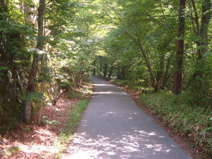 ドライブコース ~いろは坂~中禅寺湖スカイライン編~|イタリア大使館別荘記念公園