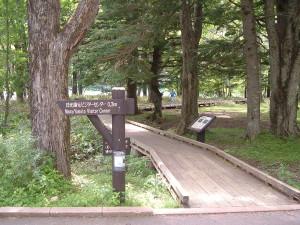 湯の湖一周|木道