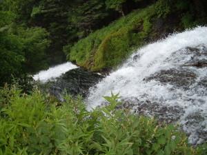 湯の湖一周|湯滝へ